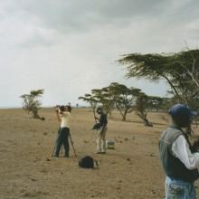 MD Coming Home: 2000, 3sat Film - Der Umweltmissionar, Crescent Island 2