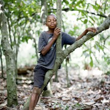MD Coming Home: 2010, WHH Fotoprojekt - Die Kraft der Träume 5, Sierra Leone; Fotograf: Daniel Rosenthal